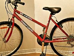 全新女式自行车